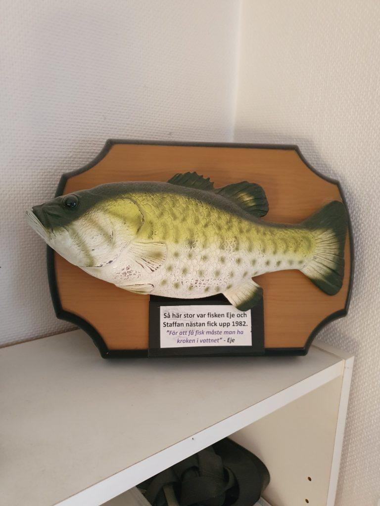 Nästanfisken